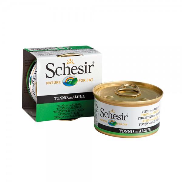 Schesir Cat Jelly Thunfisch mit Algen