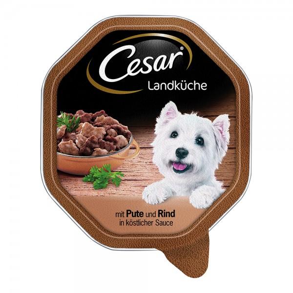 Cesar Landküche Pute & Rind in Sauce