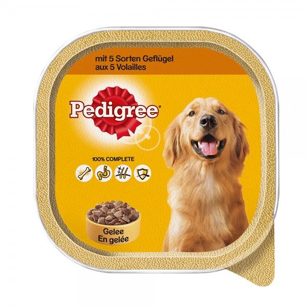 Pedigree ausgew.Hunde 3 Sorten Geflügel